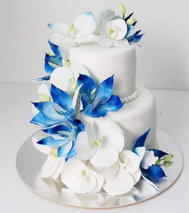 Бело-синие архидеи на сладком